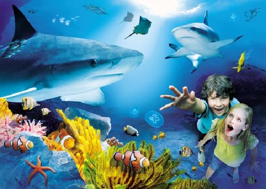 sea life is the new win for transcreation specialists Textappeal